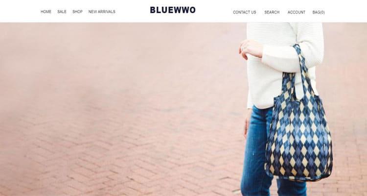 Bluewwo-com-Review