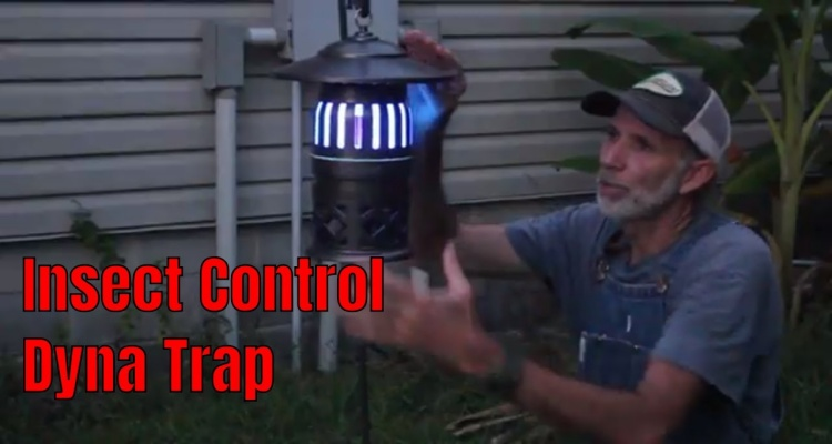 Dynatrap Xl Insect Trap Reviews [March 2020] – Should You Buy It