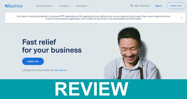 Bluevine Ppp Loans Reviews 2020
