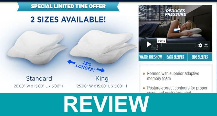 Angel Sleeper Pillow Reviews 2020