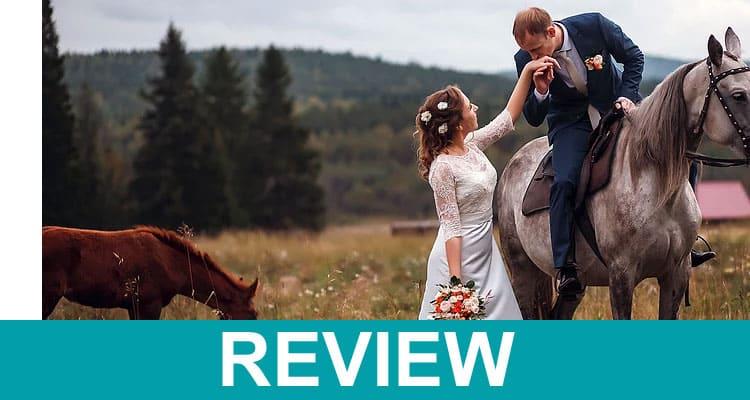 Copper Stallion Media Reviews 2020