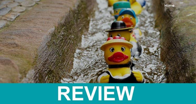 Lifetimenew com Reviews 2020