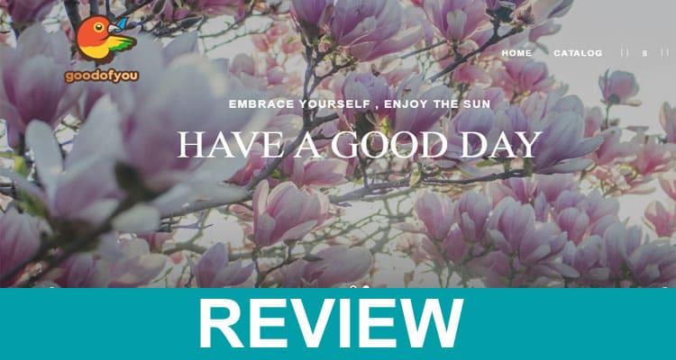 Goodofyou Net Reviews 2020