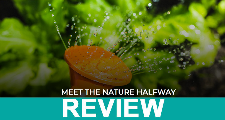 Embrace Nature Review