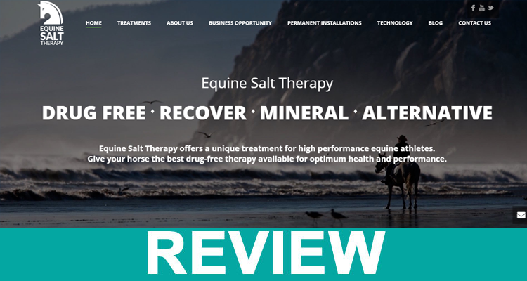 Equine Salt Therapy Reviews