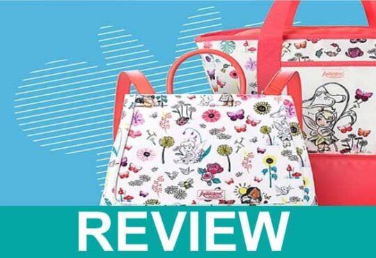 Parksdisney-com-Review