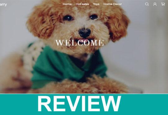 Terlarry Review