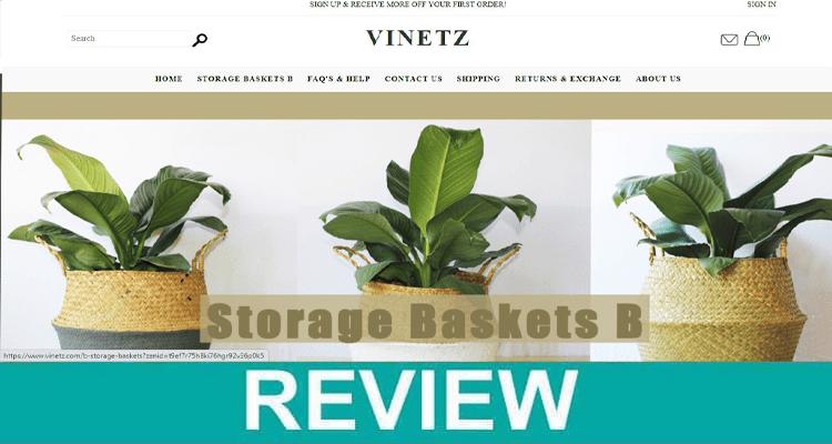 Vinetz-Review