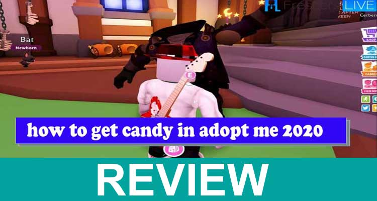to Get Candy in Adopt Me 2020 Review 2020