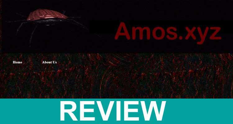 Amos.xyz 2020.