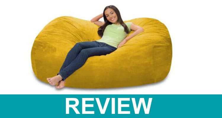 Bean Bag Theory Review 2020