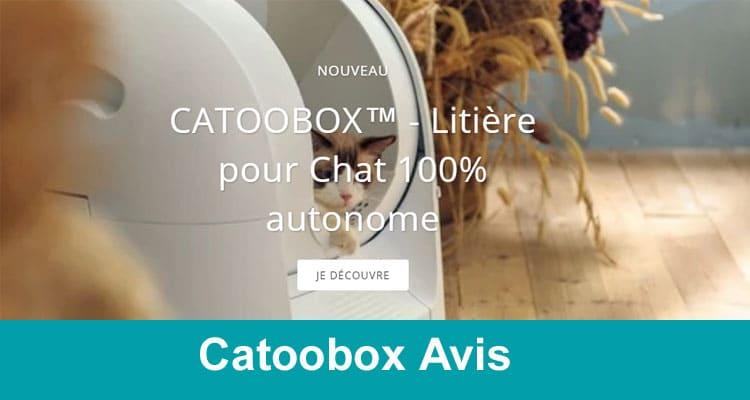 Catoobox Avis 2020