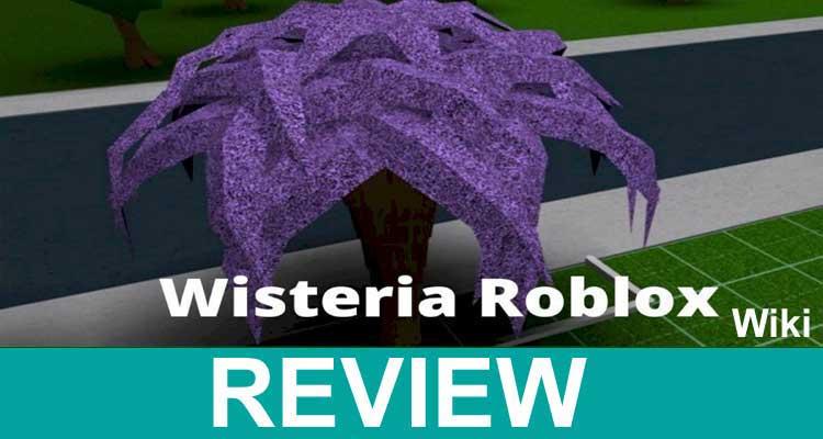 Wisteria Roblox Wiki 2020