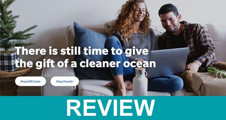 4ocean com Reviews