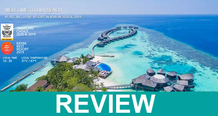 Lily Beach Resort Maldives Reviews 2020