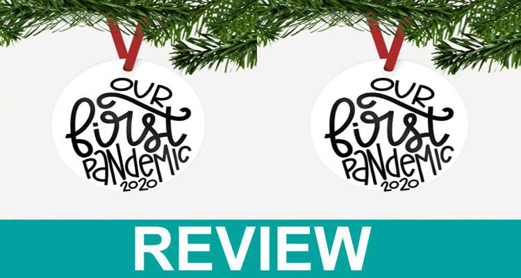 Our First Pandemic Ornament Reviews [Dec] Read Before Buy