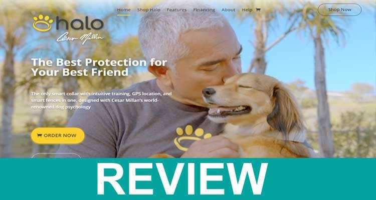 Halo Collar Reviews (Jan 2021) Read Before You Order!