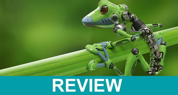 Living Robot Frog 2021