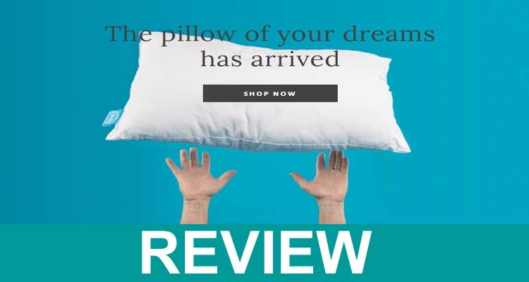 One Fresh Pillow Reviews 2021.