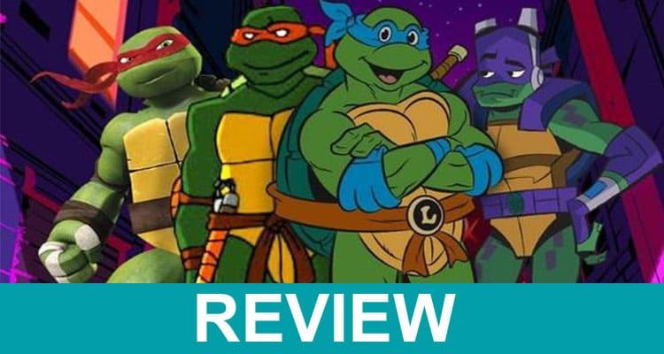 What Happened to Ninja Turtles 2021