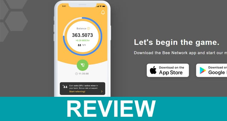What Is Bee Network App 2021 Dodbuzz