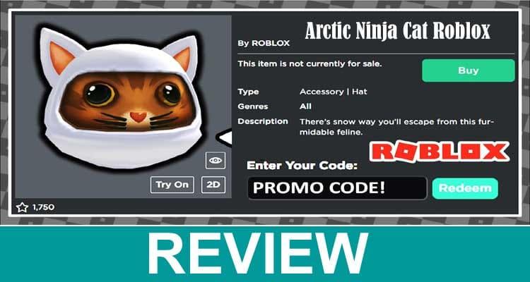 Arctic Ninja Cat Roblox 2021