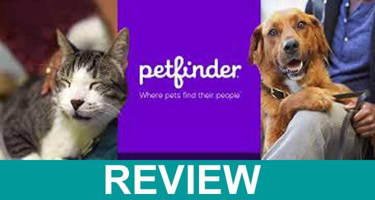 Is Petfinder Down 2021