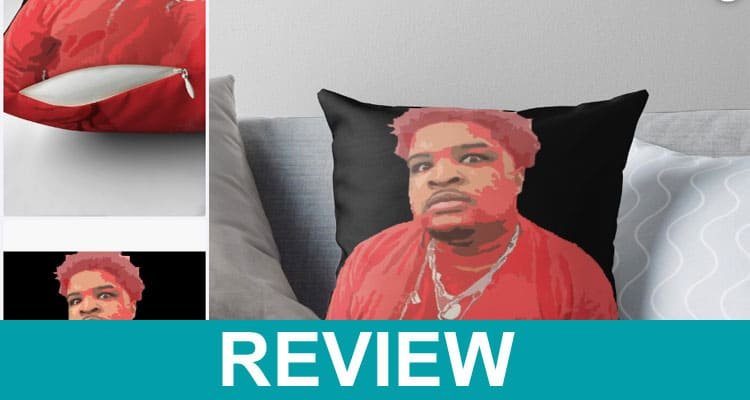 Mario Judah Pillow Reviews 2021