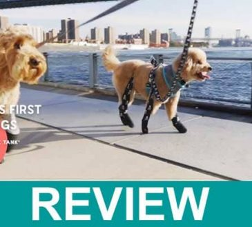 Walkee Paws Reviews 2021