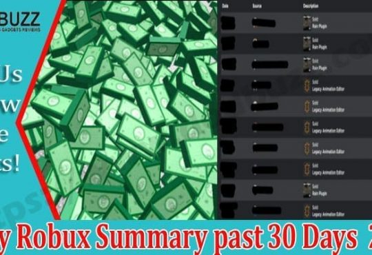 0buy Robux Summary past 30 Days 2021