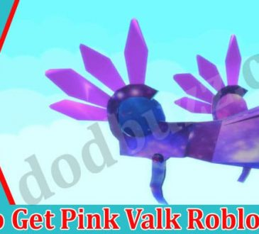 How to Get Pink Valk Roblox 2021