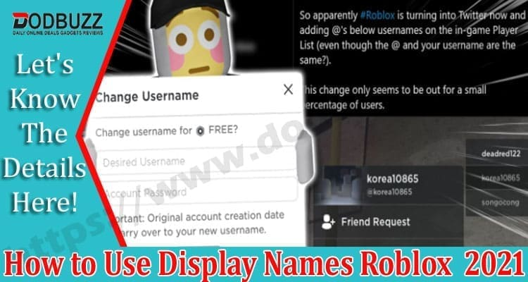 How to Use Display Names Roblox 2021