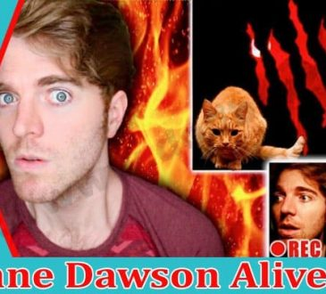 Is Shane Dawson Alive Dodbuzz.com