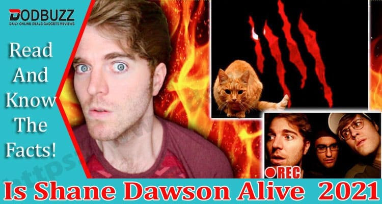 Is Shane Dawson Alive Dodbuzz.com