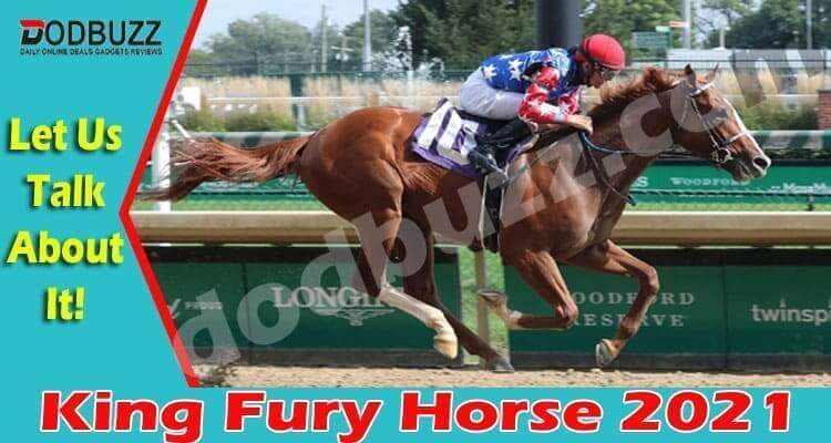 King Fury Horse {April} Contender For Kentucky Derby!