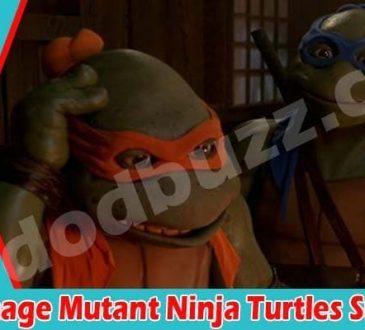 Old Teenage Mutant Ninja Turtles Suits 2021
