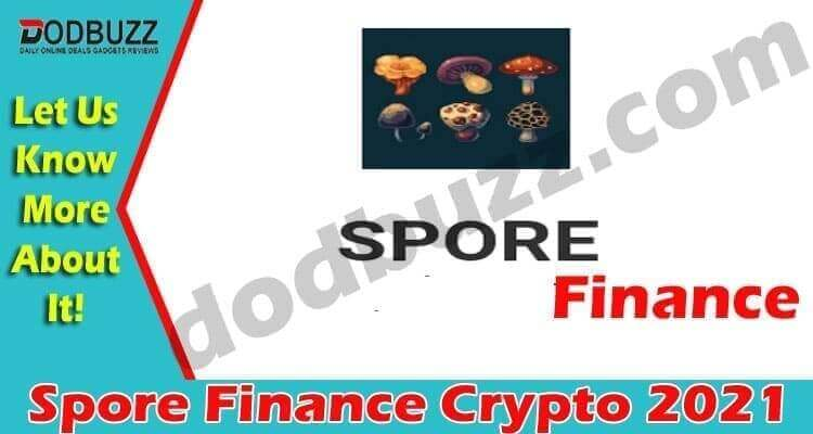 Spore Finance Crypto (April) Checkout Details Here!