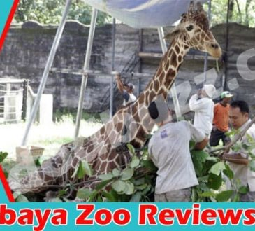 Surabaya Zoo Reviews 2021