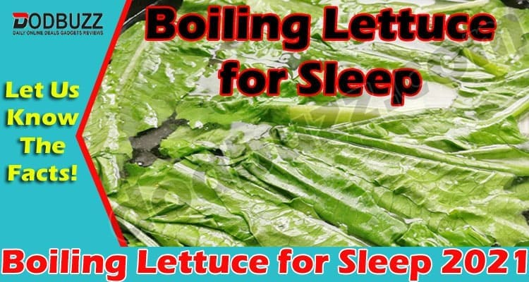Boiling Lettuce for Sleep {May} Take A Better Sleep!