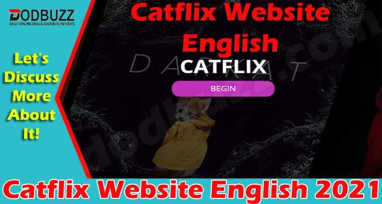 Catflix Website English 2021