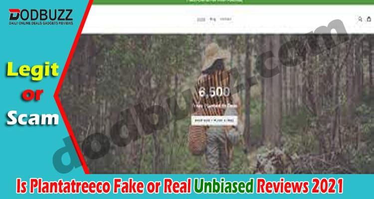 Is Plantatreeco Fake or Real (May) Read The Reviews!