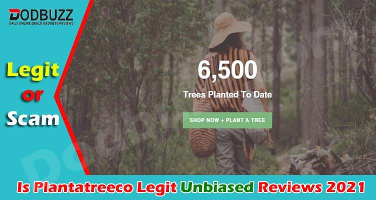 Is Plantatreeco Legit 2021
