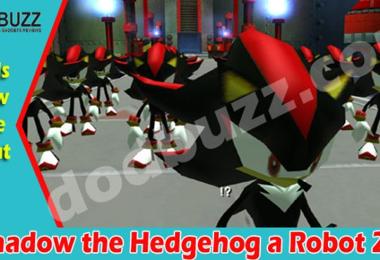 Is Shadow the Hedgehog a Robot 2021.