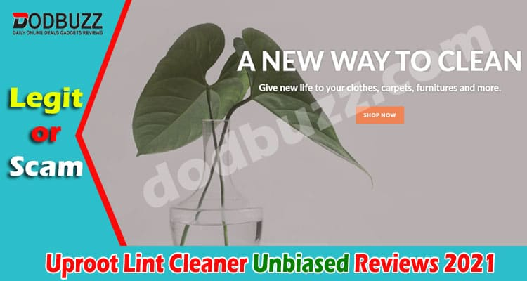 Uproot Lint Cleaner Reviews (May 2021) Is It Legit!