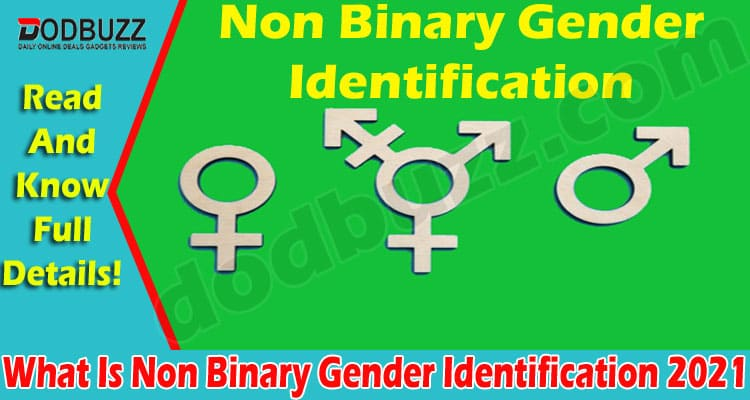 What Is Non Binary Gender Identification 2021 dodbuzz