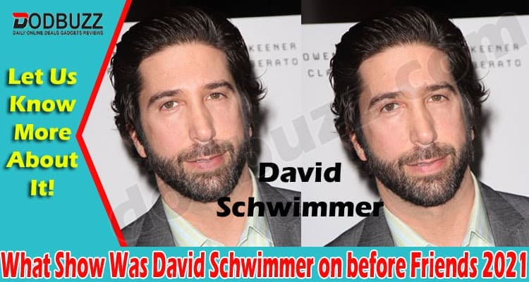 What Show Was David Schwimmer on before Friends {May}