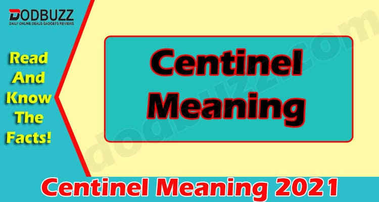 Centinel Meaning 2021