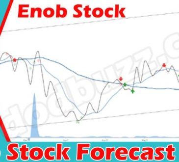 Enob Stock Forecast (June 2021) Get Detailed Insight!
