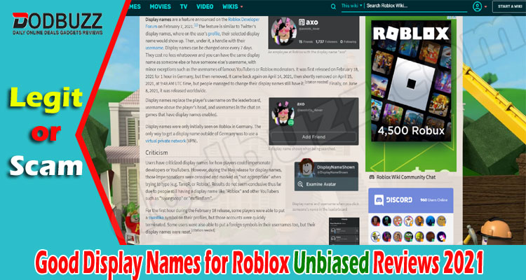 Good Display Names for Roblox (June) Know The Feature!