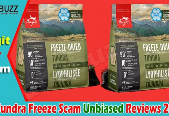 Is Tundra Freeze Scam (June) Check Detailed Reviews Now!